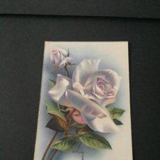 Cartoline: PRECIOSA POSTAL FLORES ANTIGUA - LA DE LAS FOTOS VER TODOS MIS LOTES DE POSTALES. Lote 242956360