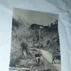 Postales: ANTIGUA POSTAL DE ANDORRA Nº 31 MAS DE RIBAFETA CAMI D´ARINSAL. Lote 264836654