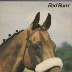 Postales: POSTAL - CABALLO - RED RUM - ED. SCANDECOR - SUECIA - AÑO 1982 - NUEVA. Lote 280127288