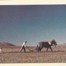 Postales: POSTAL - ESPAÑA - TRABAJOS DEL CAMPO - Nº 4 - FOT. ALAIN BAUDRY - ED. GUAL S.A. AÑO 1980 - NUEVA. Lote 280127773