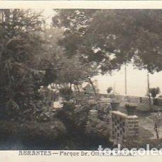 Postales: PORTUGAL & CIRCULADO, ABRANTES, PARQUE DR. OLIVEIRA SALAZAR, EDIÇÃO HAVANEZA, LISBOA 1956 (681). Lote 289522578