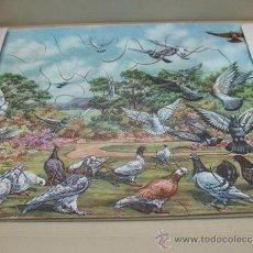 Puzzles: JUEGO DE MESA - PUZZLE DE AVES DE CARTÓN. Lote 37420268