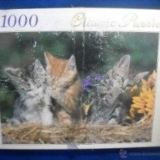 Puzzles: PUZZLE PUZLE CLASSIC - 1000 PIEZAS . Lote 47523834