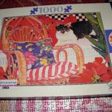 Puzzles: PUZLE 1000 PIEZAS EDUCA - INCOMPLETO. Lote 58240304