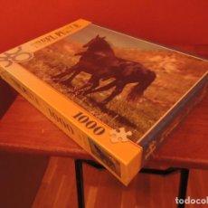 Puzzles: PUZZLE DE 1000 PIEZAS. Lote 67034966