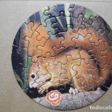 Puzzli: PUZLE ARDILLA. QUESITOS MG 1975. NO ENCOLADO.. Lote 77102573