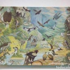 Puzzles: PUZZLE 1500 PIEZAS: JAMES HAMILTON DELUXE JIGSAW : AVES DE RAPIÑA / BIRDS OF PREY. Lote 73810362