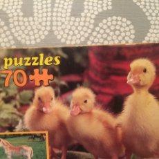 Puzzles: PUZZLE PATITOS EDUCA 81 SIN USAR ANTIGUO RAVESBURGUER CLEMENTONI,DISET,FEBER,MB,HASBRO,CEFA,MATTEL. Lote 105207850