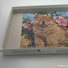 Puzzles: PUZZLES. Lote 123368319