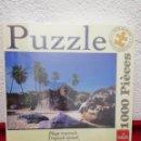 Puzzles: PUZZLE 1000 PIEZAS SIN ABRIR. Lote 159939914