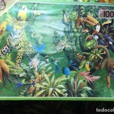 Puzzles: PUZLE 1000 PIEZAS COMPLETO. Lote 185726988
