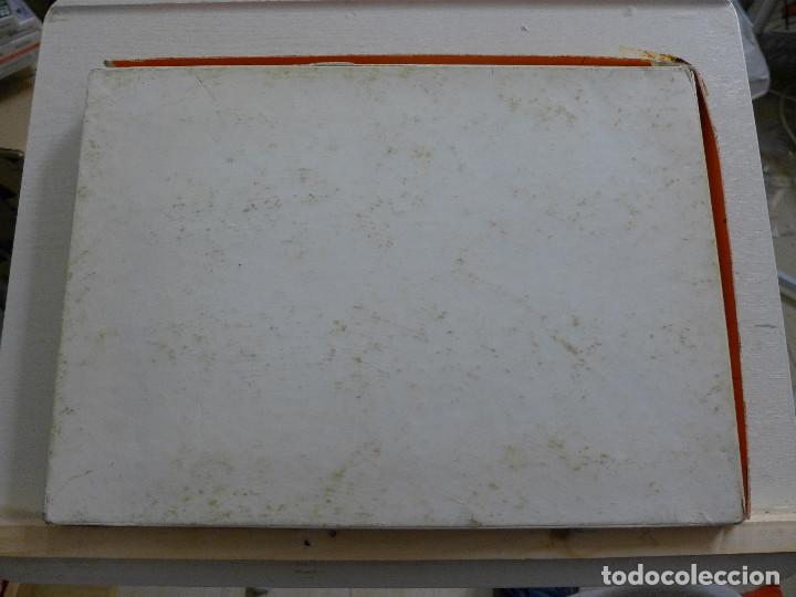 Puzzles: LOS CINCO CONTINENTES PUZZLE DE GEOGRAFIA VIVA DE EDUCA COMPLETO - Foto 2 - 197326826