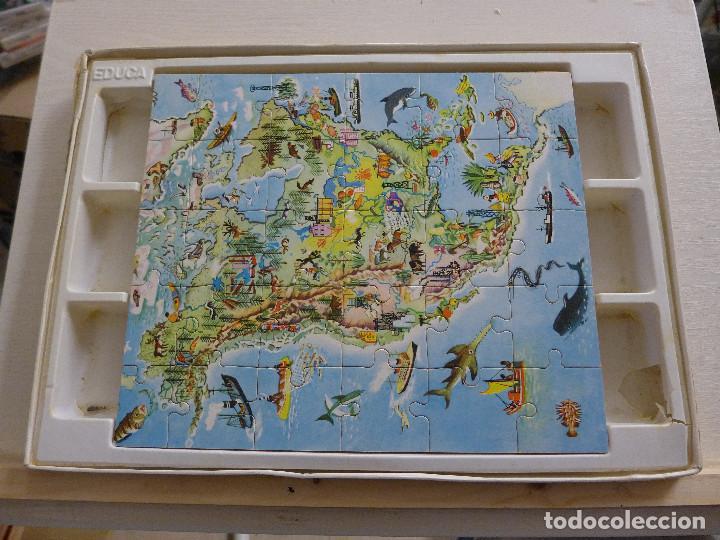 Puzzles: LOS CINCO CONTINENTES PUZZLE DE GEOGRAFIA VIVA DE EDUCA COMPLETO - Foto 7 - 197326826