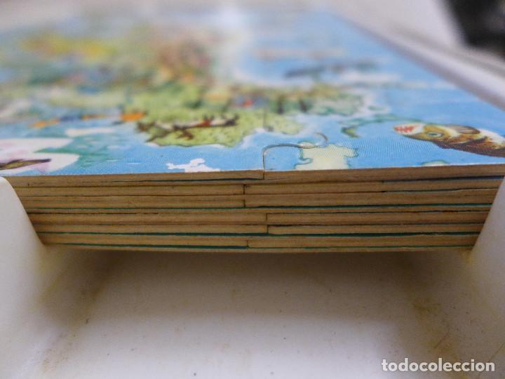 Puzzles: LOS CINCO CONTINENTES PUZZLE DE GEOGRAFIA VIVA DE EDUCA COMPLETO - Foto 8 - 197326826