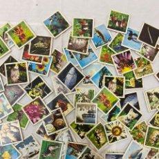 Puzzles: NATUR MEMORY - ANIMALES Y PLANTAS EDUCA FICHAS. Lote 219904710