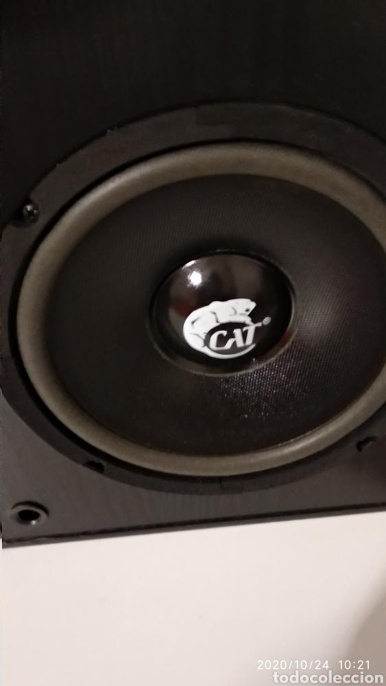 ALTAVOCES CAT BERLÍN 2000/ L (Radios, Gramófonos, Grabadoras y Otros - Amplificadores y Micrófonos de Válvulas)