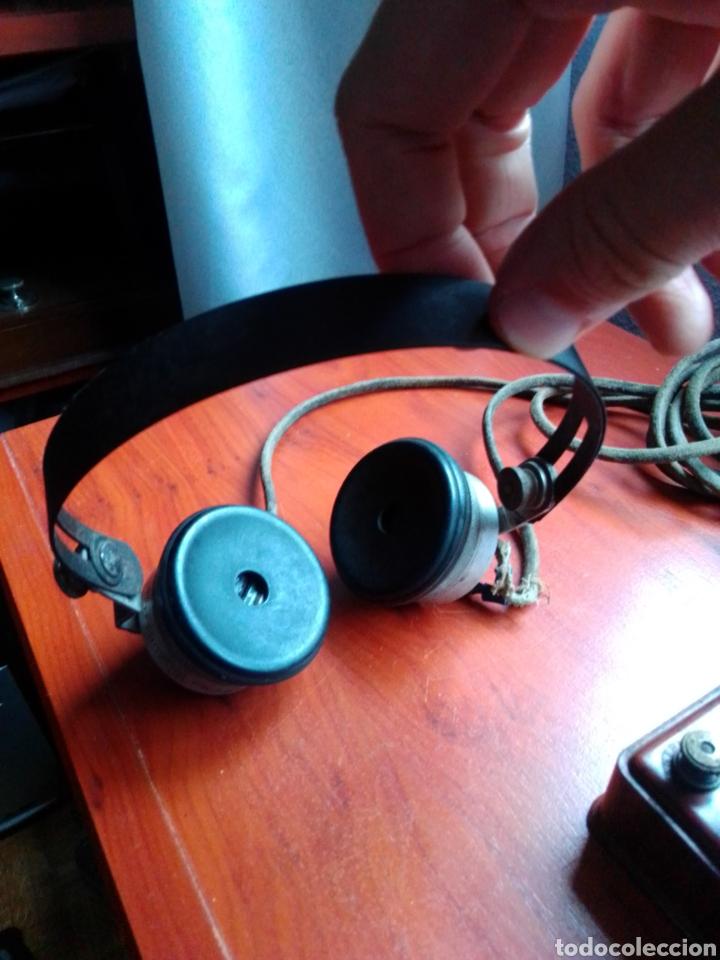 Radios de galena: Radio galena pival - Foto 11 - 187187716