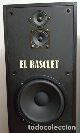 Radios antiguas: ESTUPENDA PAREJA DE ALTAVOCES-SONY SS-E681V - Foto 2 - 162275414
