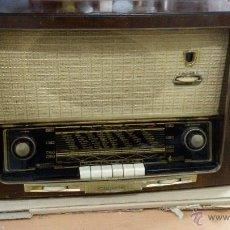 Radios de válvulas: RADIO GRUNDIG 220V AM/FM. Lote 51659575