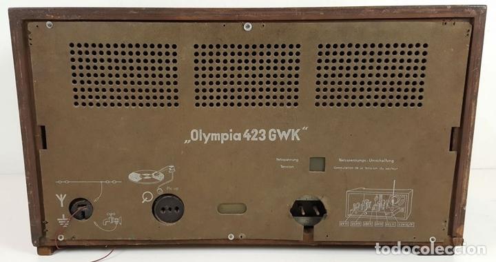 Radios de válvulas: RADIO A VÁLVULAS. OLYMPIA. MODELO 423 GWK. ALEMANIA. 1939 / 1940. - Foto 3 - 105900015
