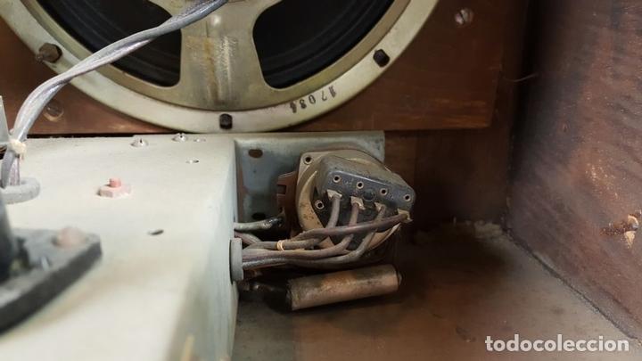 Radios de válvulas: RADIO A VÁLVULAS. OLYMPIA. MODELO 423 GWK. ALEMANIA. 1939 / 1940. - Foto 13 - 105900015