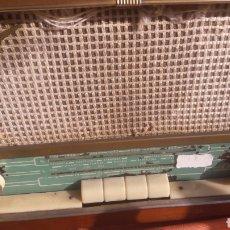 Röhrenempfänger - Radio Francis rb888 funciona 220 v AM - 153519168