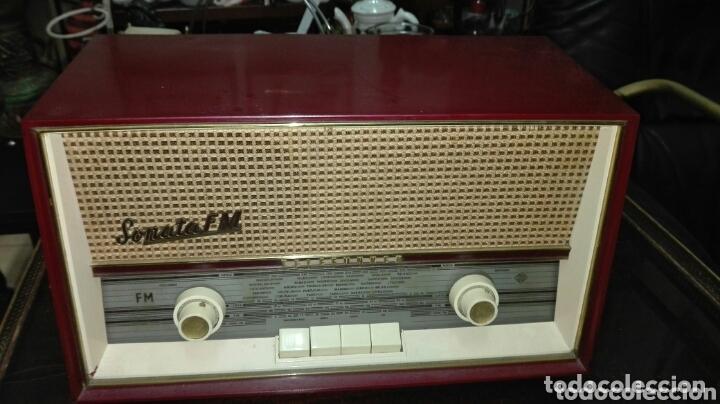 RADIO TELEFUNKEN (Radios, Gramófonos, Grabadoras y Otros - Radios de Válvulas)