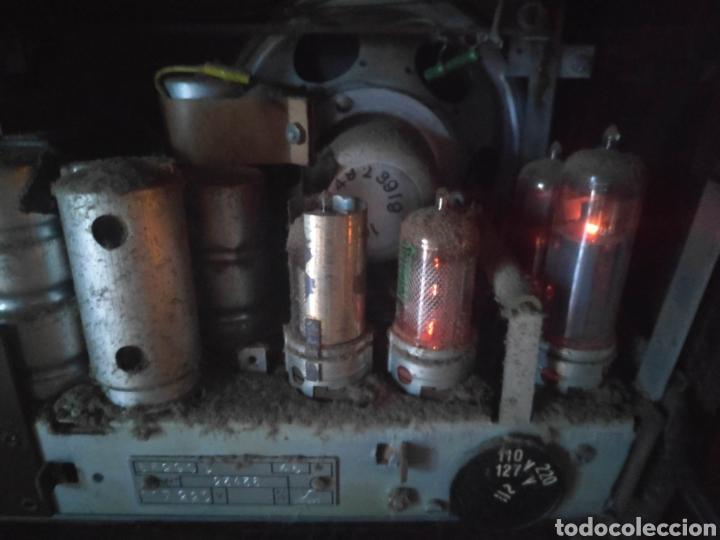 Radios de válvulas: Radio philips baquelita muy bueno estado con su transformador 110-220 . Todo original - Foto 8 - 209983793