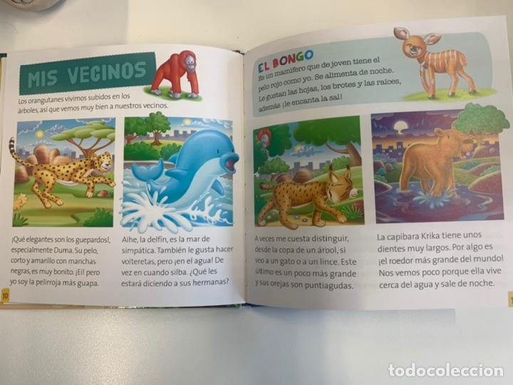 Relatos y Cuentos: MIS ANIMALES DEL ZOO COLECCIÓN CUENTOS - Foto 2 - 242913650
