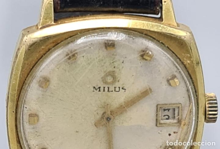 Relojes automáticos: RELOJ DE PULSERA MILUS. AUTOMATIC. CAJA DE METAL CHAPADO EN ORO. CIRCA 1960. - Foto 4 - 228112055