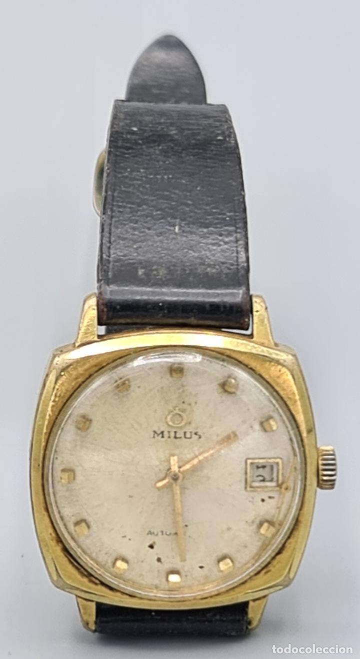 RELOJ DE PULSERA MILUS. AUTOMATIC. CAJA DE METAL CHAPADO EN ORO. CIRCA 1960. (Relojes - Relojes Automáticos)