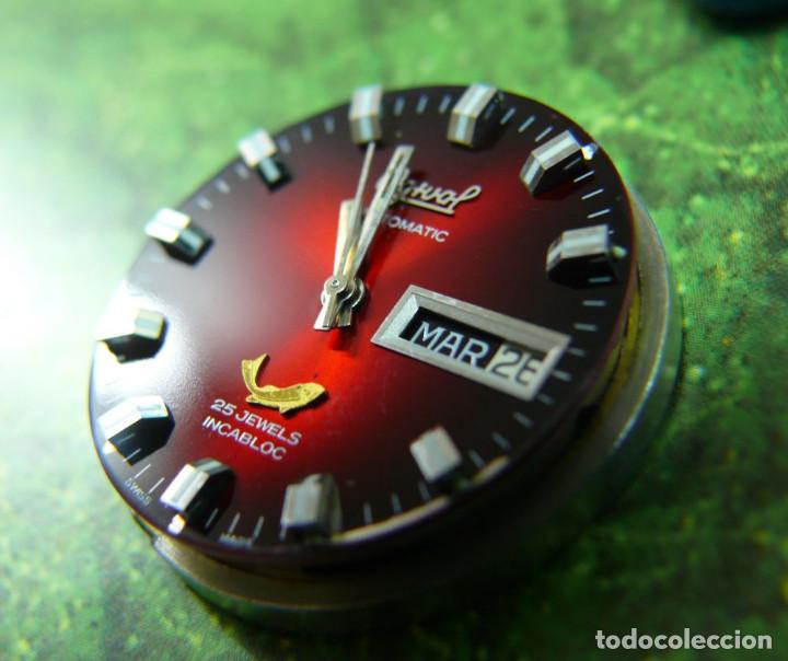 Relojes automáticos: OGIVAL AUTOMATICO CAL AS 2066 - Foto 9 - 232850730