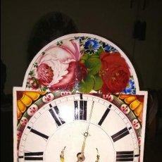 Relojes de pared: PRECIOSA RATERA CON MAGNÍFICA ESFERA. Lote 61685372