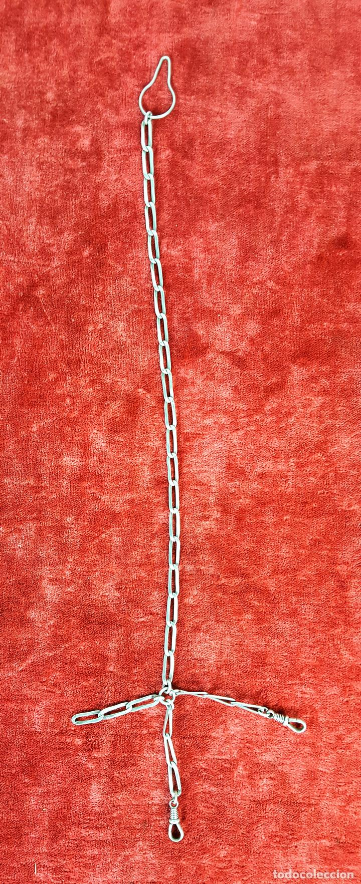 CADENA LEONTINA. METAL PLATEADO. ESPAÑA. PRINC. S. XX (Relojes - Pared Carga Manual)