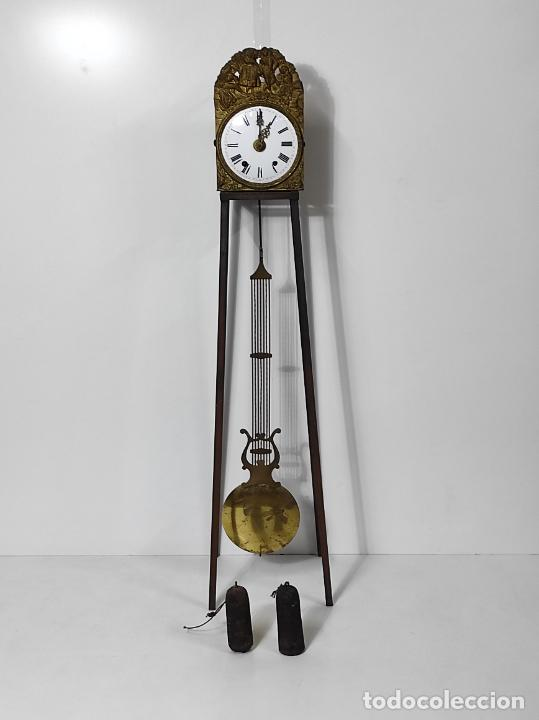 RELOJ PARED - MAQUINA MOREZ - PÉNDULO DE LIRA - S. XIX (Relojes - Pared Carga Manual)