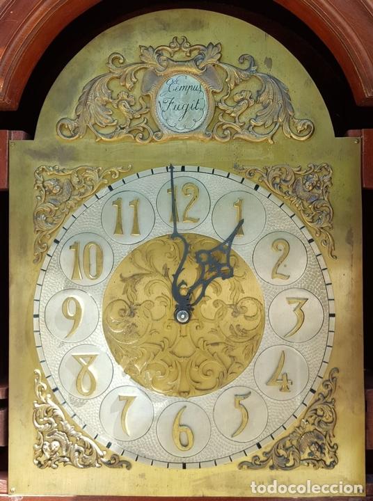 Relojes de pie: RELOJ DE PIE. MUEBLE EN MADERA DE RAÍZ. ESTILO INGLES. CIRCA 1950. - Foto 3 - 160352801