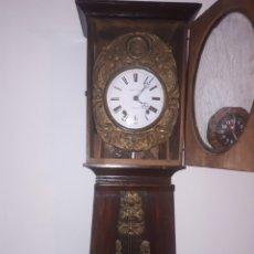 Relojes de pie: ANTIGUO RELOJ DE PIÉ DE PÉNDULO. Lote 194133690