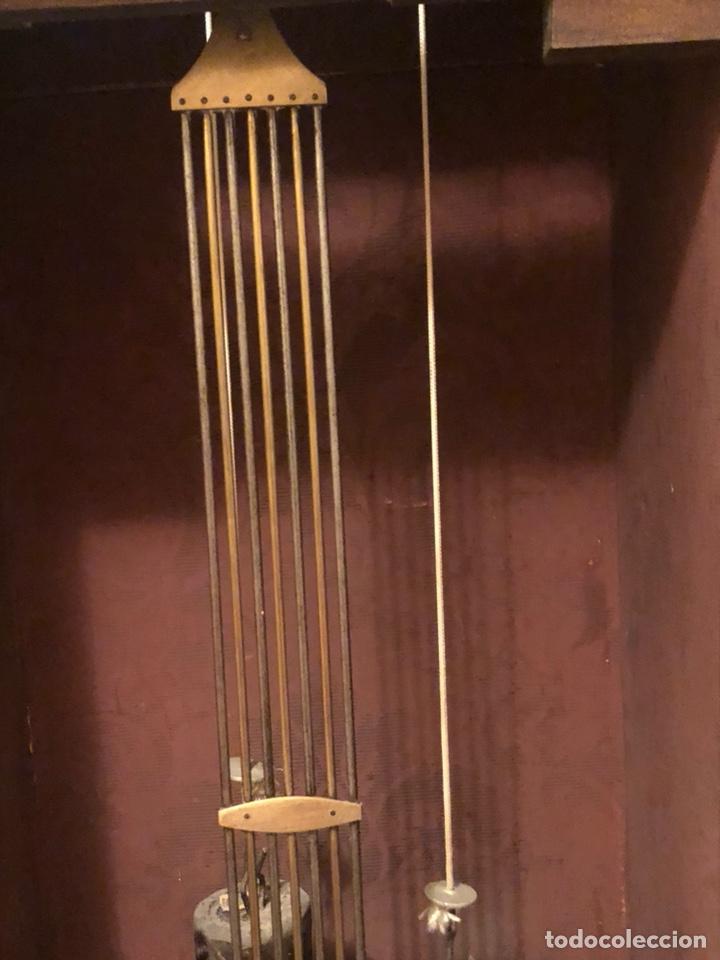 Relojes de pie: Reloj morez antiguo, siglo XIX sólo recogida - Foto 8 - 203951810