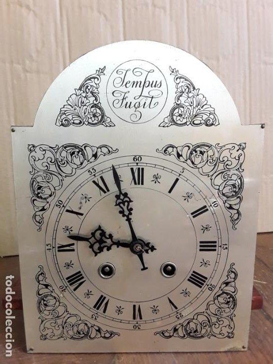 Relojes de pie: Reloj alemán Gong Tempus Fugit. En funcionamiento; da las horas y las medias. - Foto 5 - 230739490