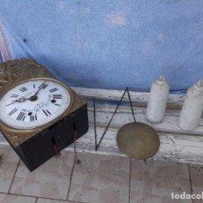 Relojes de pie: MECANISMO DE RELOJ MOREZ. Lote 283223378