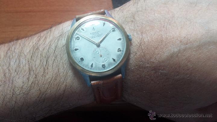 Relojes de pulsera: RELOJ Suizo CAUNY PRIMA, LA CHAUX DE FONS, escaso CAL. F-399, ancre 17 rubis, grande, Antimagnetic - Foto 4 - 54420927