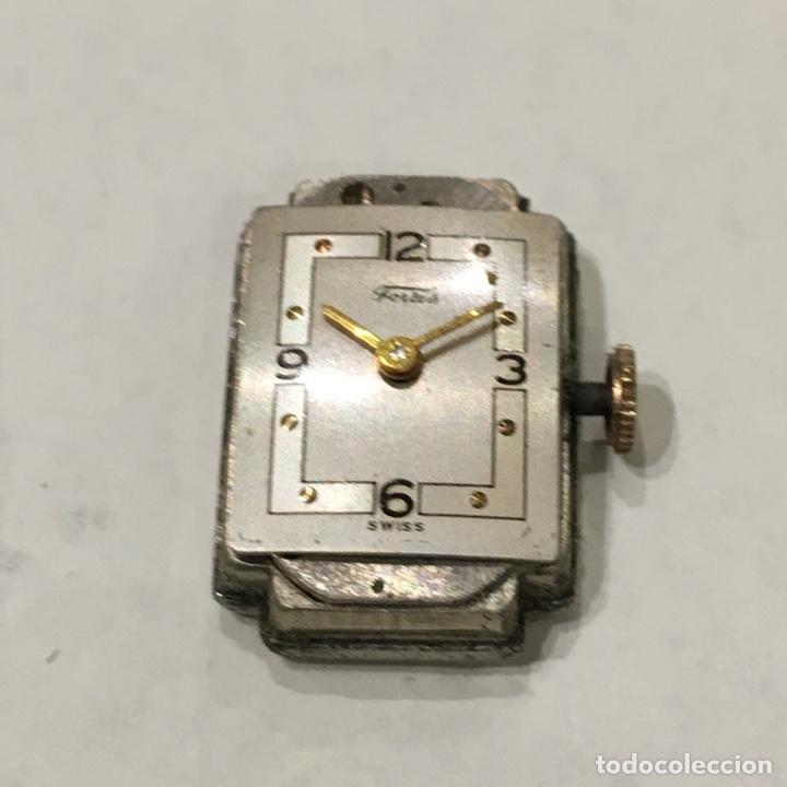 Relojes de pulsera: RELOJ FORTIS PULSERA SEÑORA - Foto 2 - 122079428