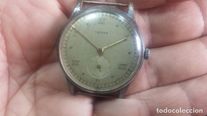 Relojes de pulsera: Botito y grande reloj TEGRA para reparar o para piezas. - Foto 15 - 124239283