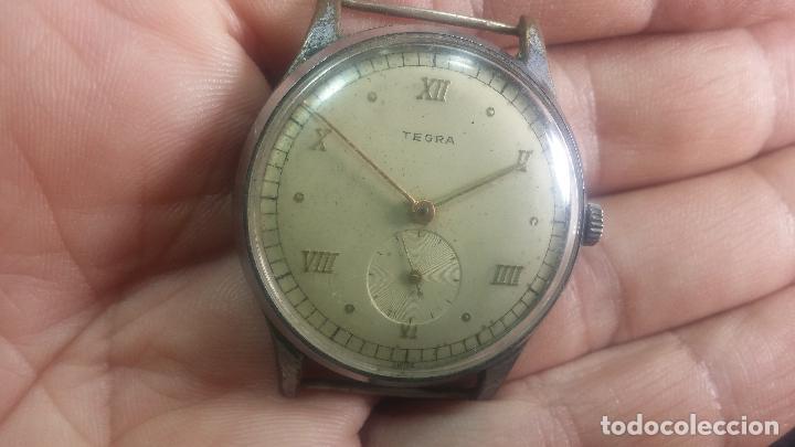 Relojes de pulsera: Botito y grande reloj TEGRA para reparar o para piezas. - Foto 16 - 124239283