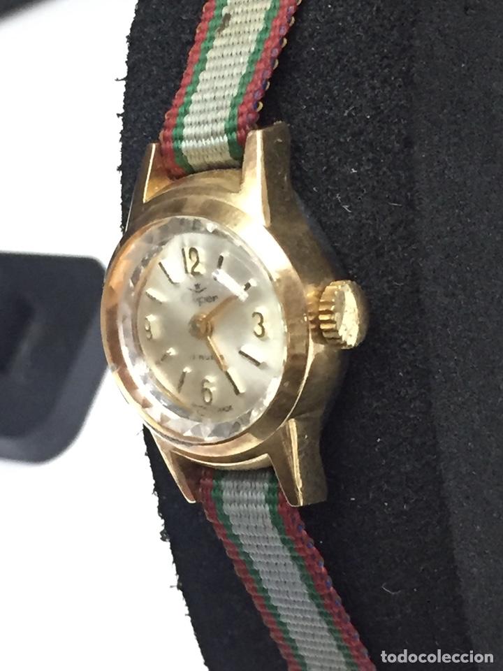 Relojes de pulsera: Reloj carga manual marca CLIPER 17 rubis en FUNCIONAMIENTO - Foto 3 - 127977176
