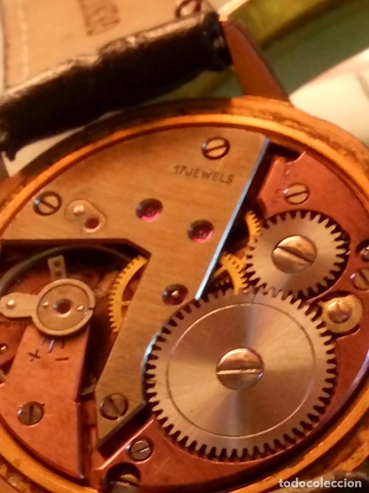 Relojes de pulsera: DOGMA - MANUAL. AÑOS 50. FUNCIONANDO. 35.1 MM. S/C. P. ORO. TESTADO Y AJUST. INFO EN DESCRIPCION. - Foto 9 - 231014475