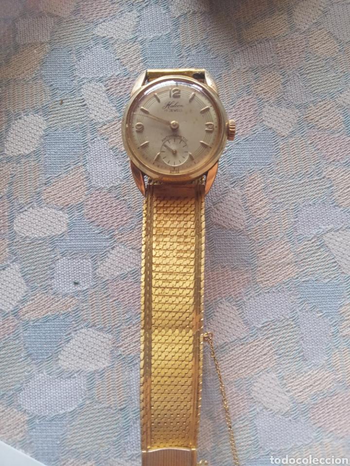 RELOJ SEÑORA HALCON AÑOS 50 CHAPADO ORO 8 MICRAS 17 JEWELS (Relojes - Pulsera Carga Manual)