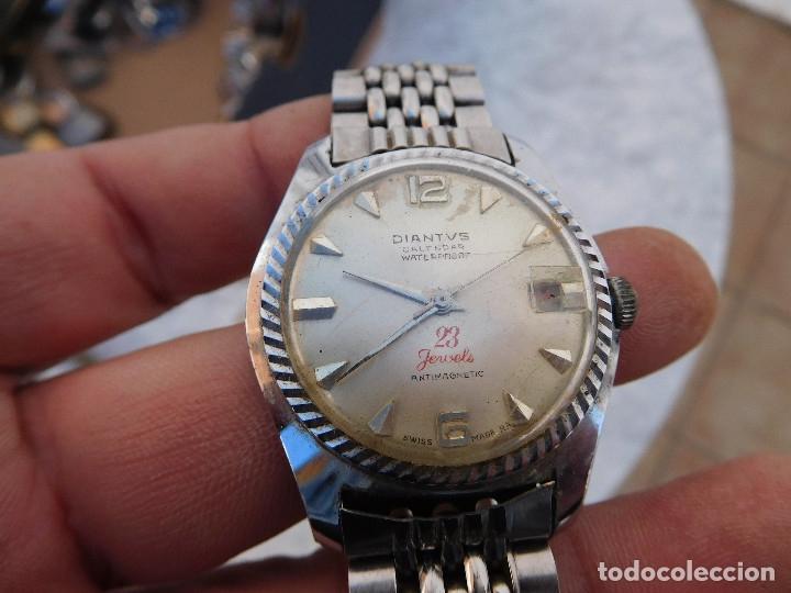 Relojes de pulsera: Reloj manual marca Diantvs años 60 - Foto 2 - 182628598