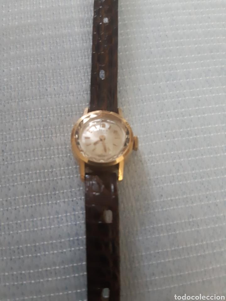 RELOJ DE ORO TITAN 17 RUBIS (Relojes - Pulsera Carga Manual)