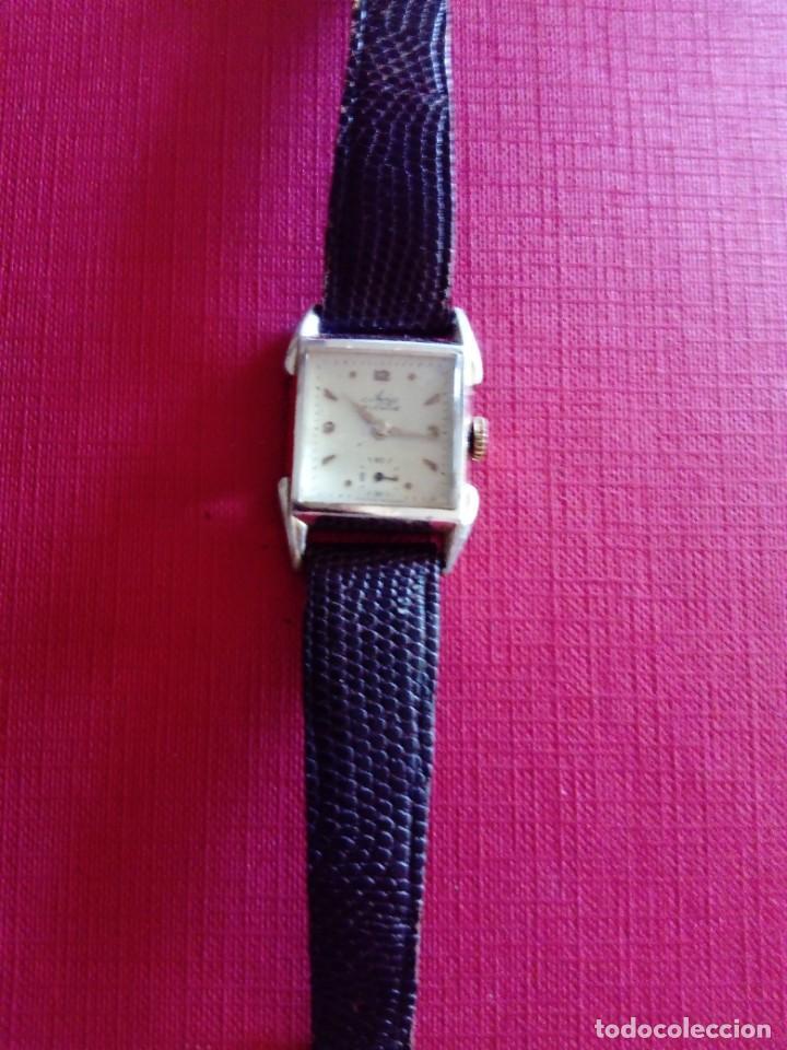 Relojes de pulsera: Reloj de mujer Avia - Foto 3 - 207219381